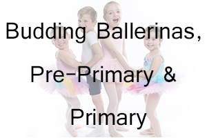 AIM Budding Ballerinas, Pre-Primary and Primary